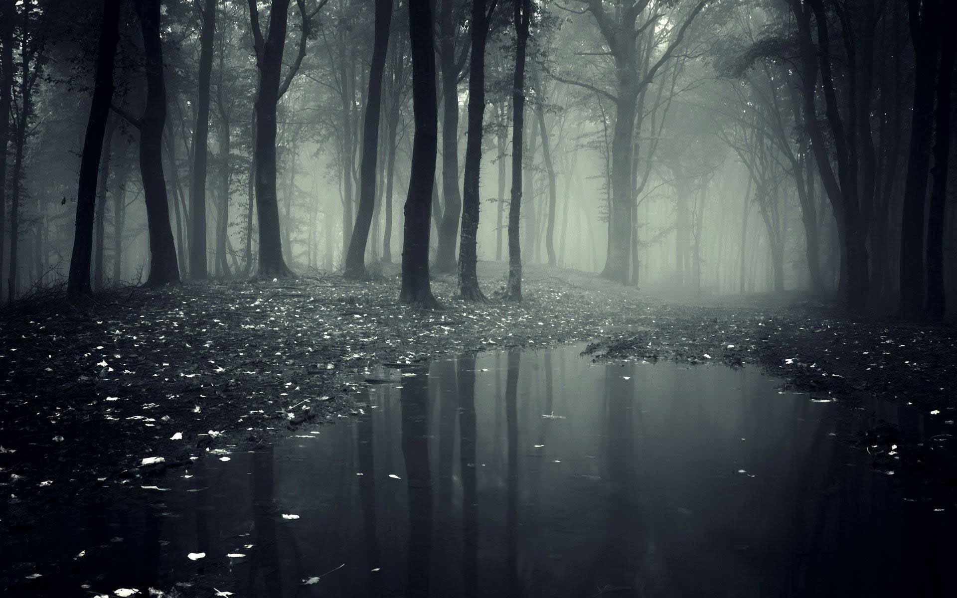 The Grey Mist